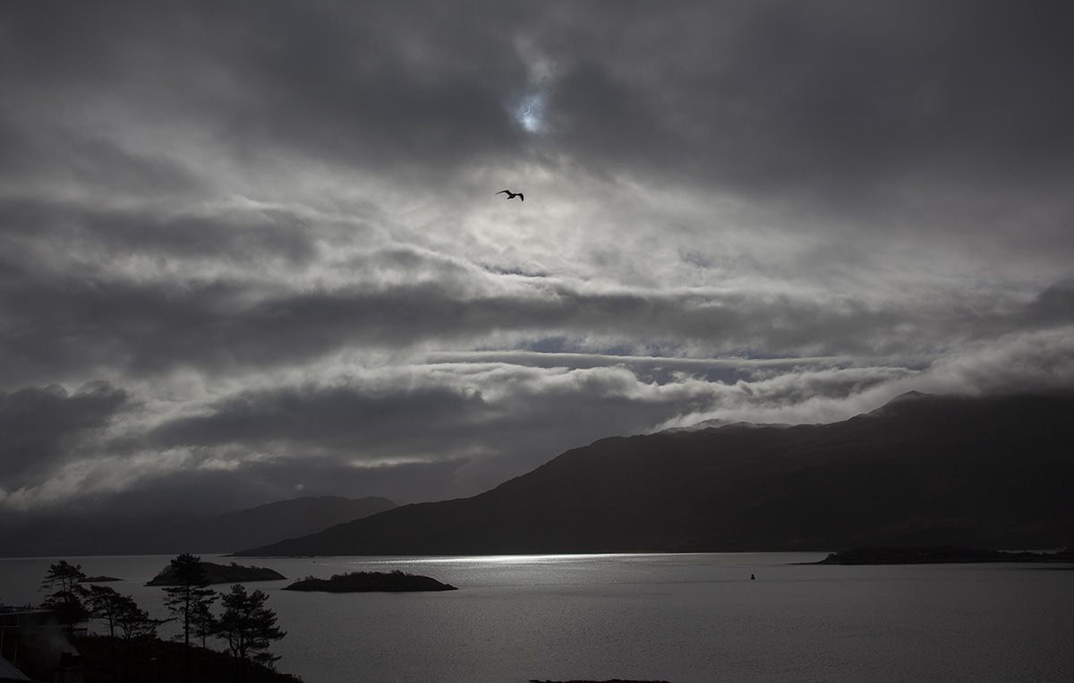 Total eclipse at Kyle of Lochalsh with bird